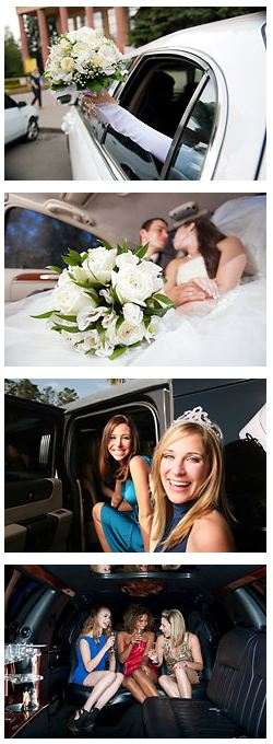 Weddings & Occasions